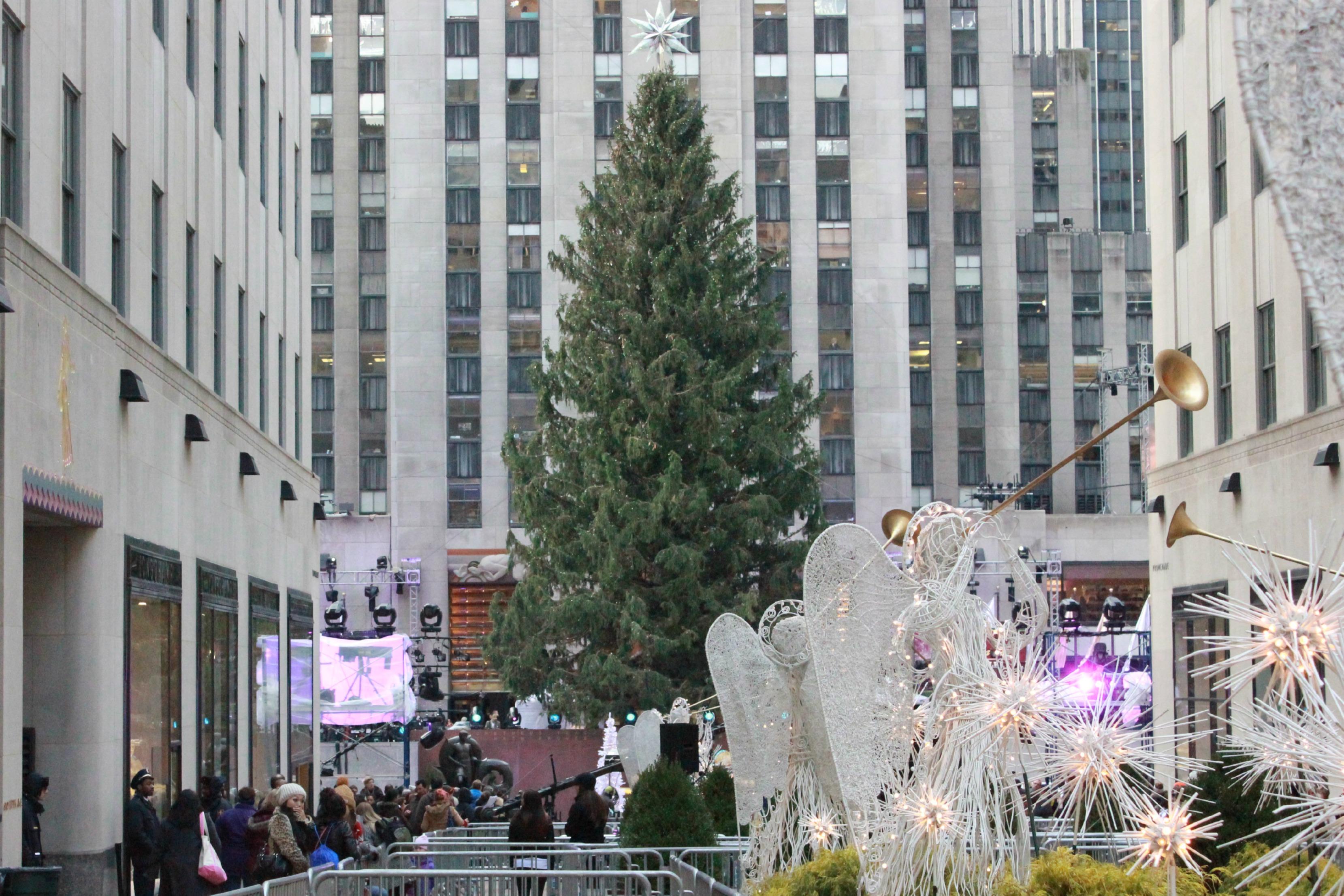 Address Of Rockefeller Center Christmas Tree