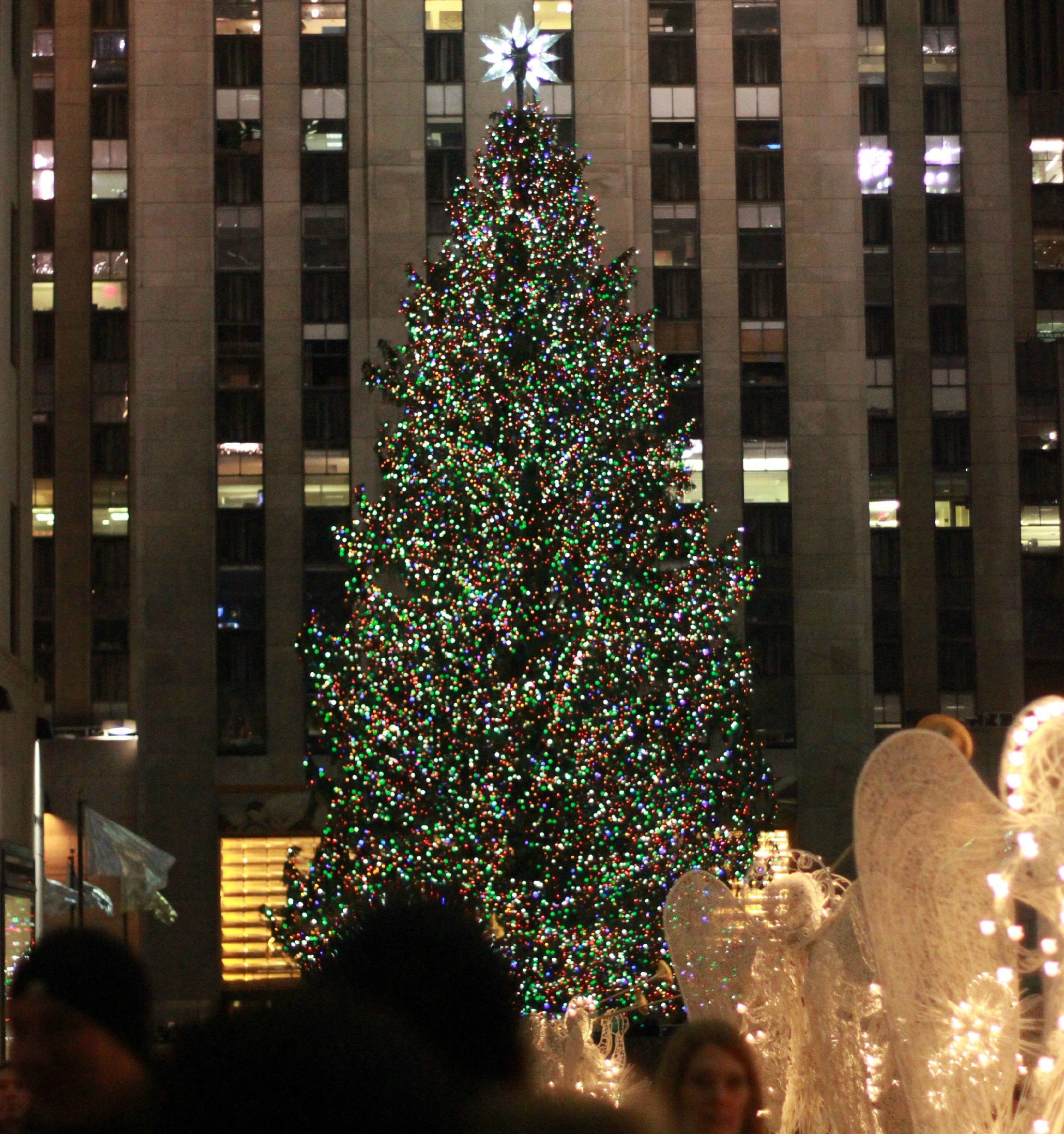 tree top & Rockefeller center christmas tree lighting | New York Sightseeing