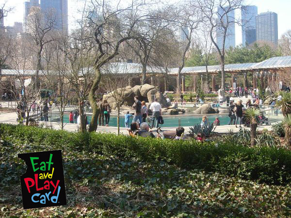 cp zoo eat and play