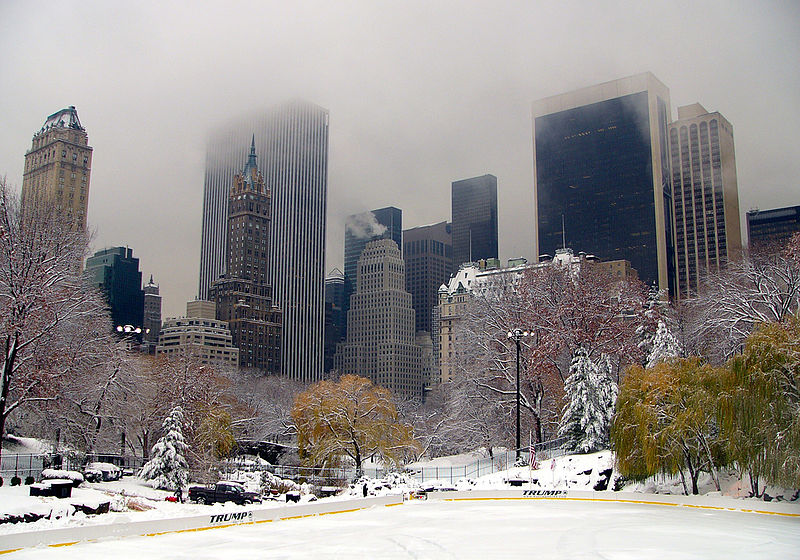 Nyc news new york sightseeing for Things to do in nyc in winter