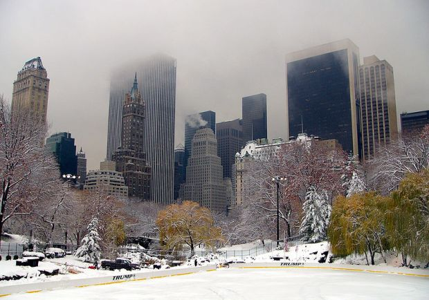 800px-Central_Park_winter_NYC1