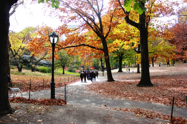 central park nyc fall